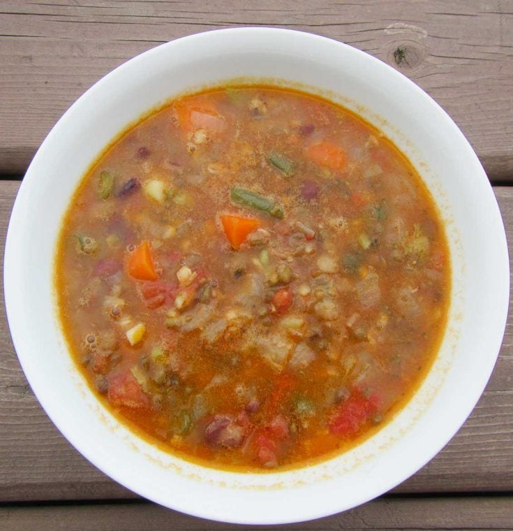 Sprouted Mung Bean and Lentil Vegetarian Soup