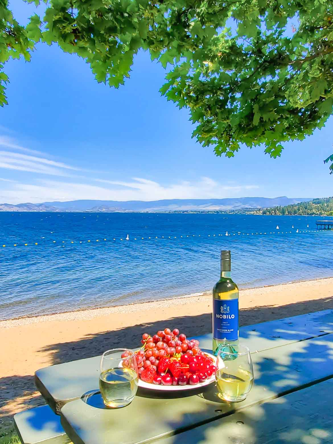 Nobilo Sauvignon Blanc white wine and fresh fruit by the beach on a mountain lake