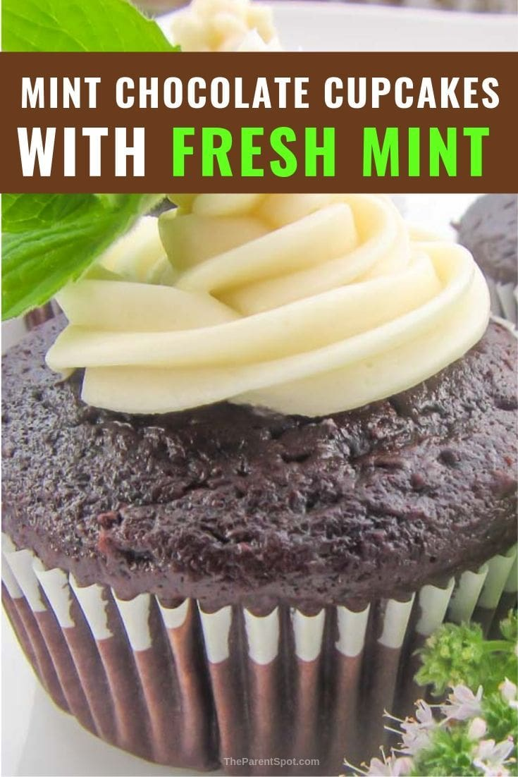 mint chocolate cupcakes with fresh mint