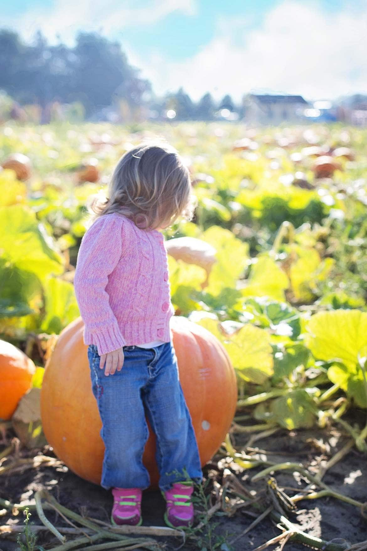 girl with giant pumpkin
