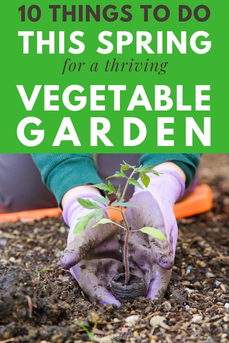 10 things to do this spring for a thriving vegetable garden