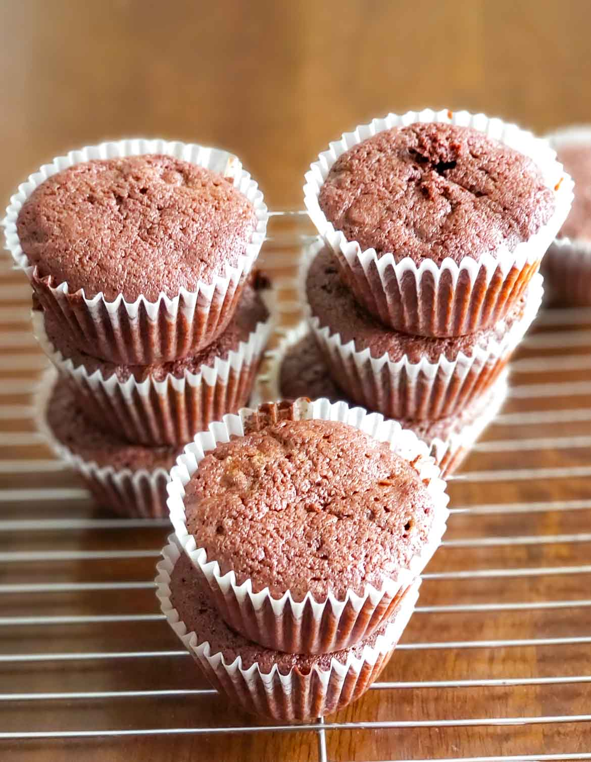 Double Chocolate Chip Cupcakes