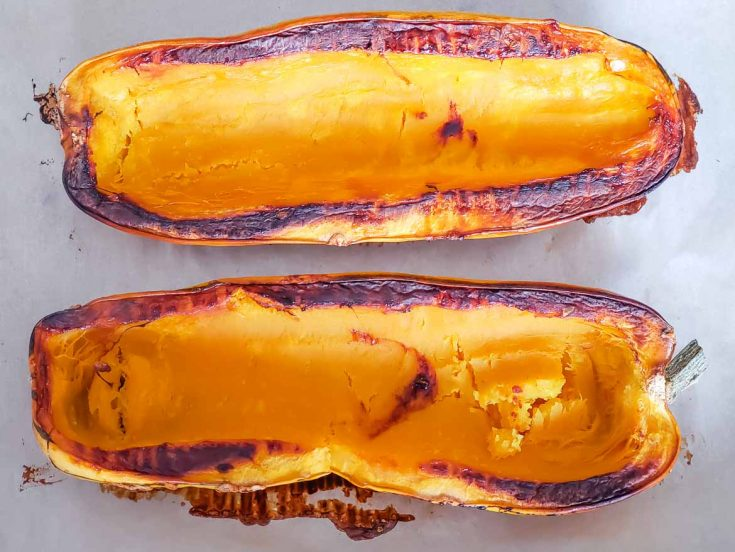 roasted delicata squash