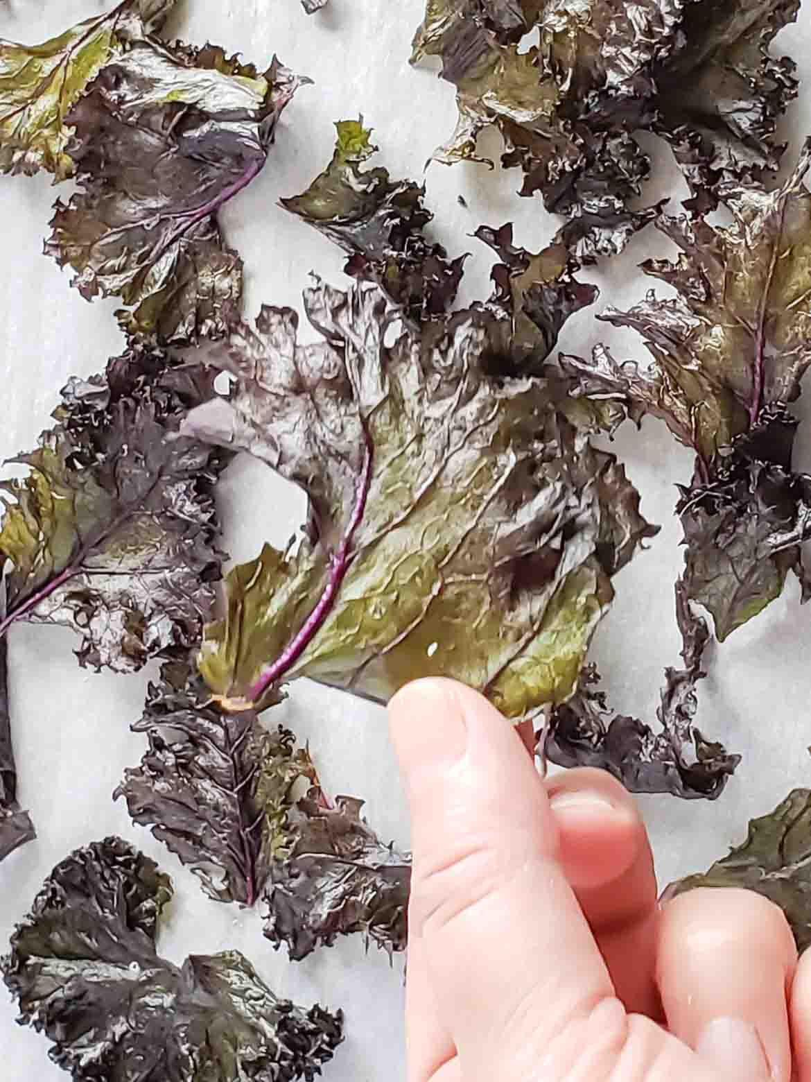 baked purple kale chips
