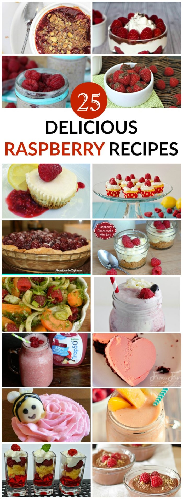 25 delicious raspberry recipes raspberry recipe collection