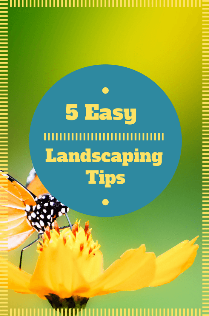 5 Easy Landscaping Tips to Make Your Yard Look Terrific