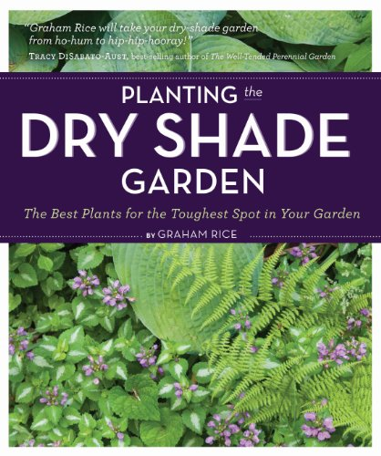 The best perennials for shade planting the dry shade garden the best plants for the toughest spot in your garden mightylinksfo