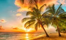 Beautiful Barbados Sunset The Best Family Things to See and Do in Barbados