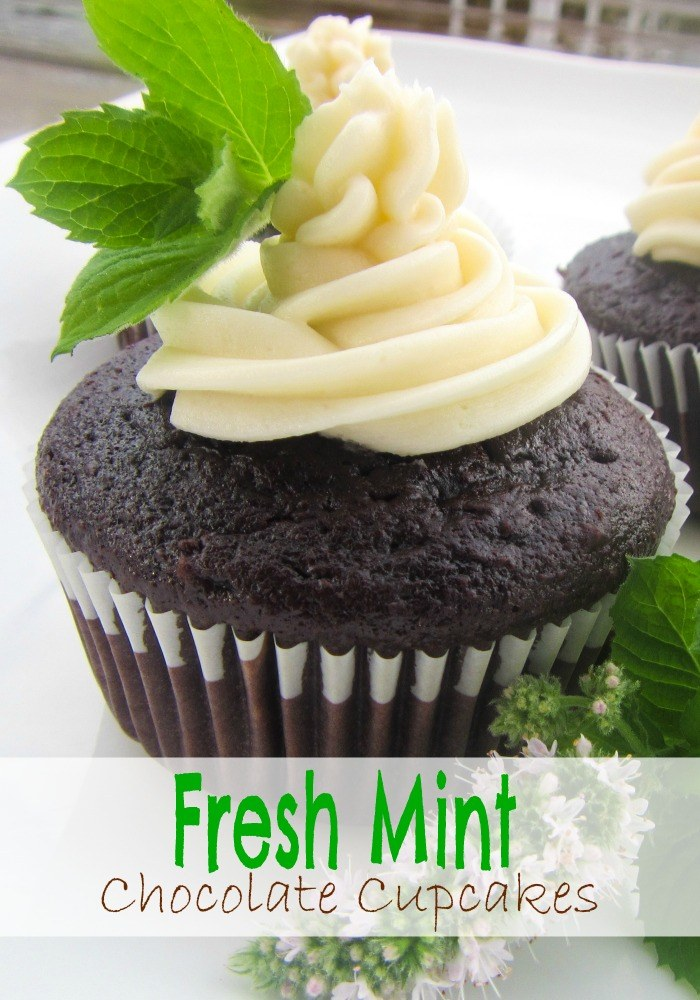 Fresh Mint Chocolate Cupcakes