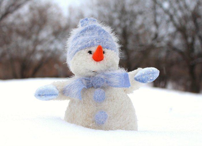 MF Fuzzy Snowman New Imagekep