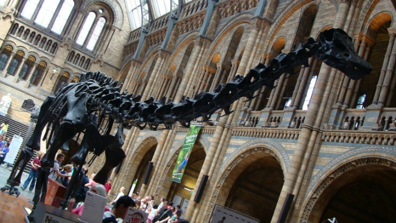 Natural History Museum in London by nikoretro on Flickr