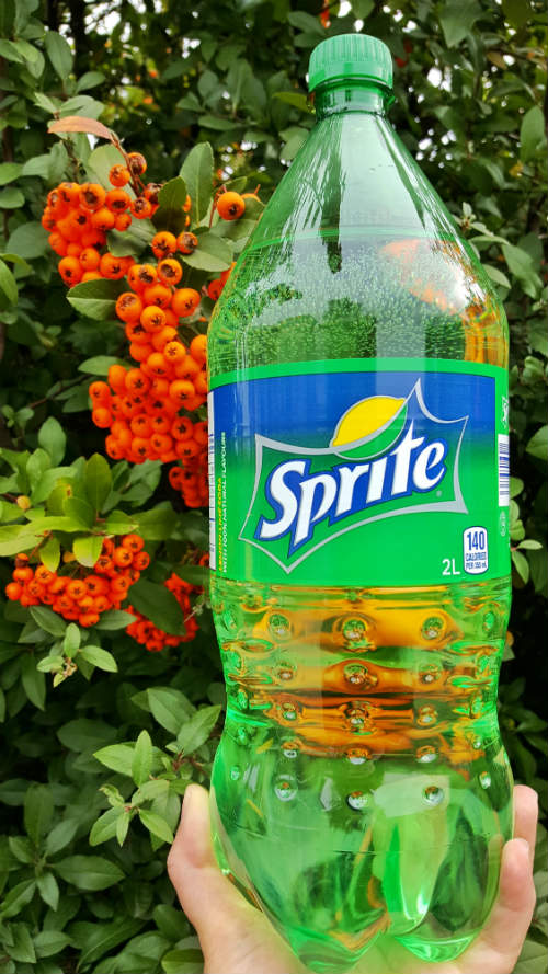 Sprite with holiday berries