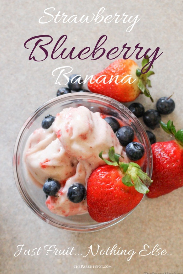 Strawberry Blueberry Banana Yonanas Frozen Dessert