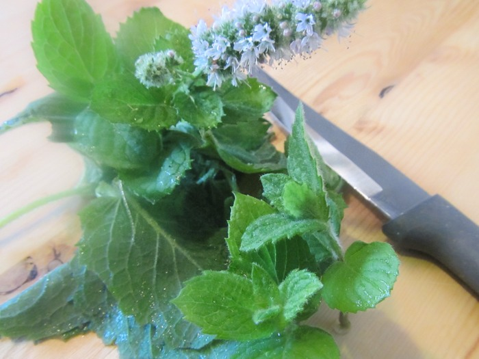 Fresh mint on the chopping board The Parent Spot