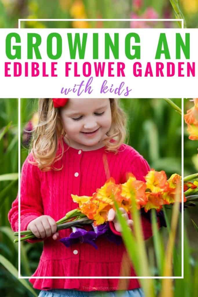 This kids flower garden idea is all about edible flowers, and having fun with the kids. We've come up with a fun list of edible flowers to grow in your garden, plus tips for making them thrive. #edibleflowers #garden #gardentip #gardeningtips
